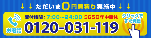 0120-031-119