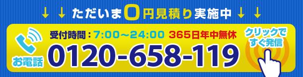 0120-658-119